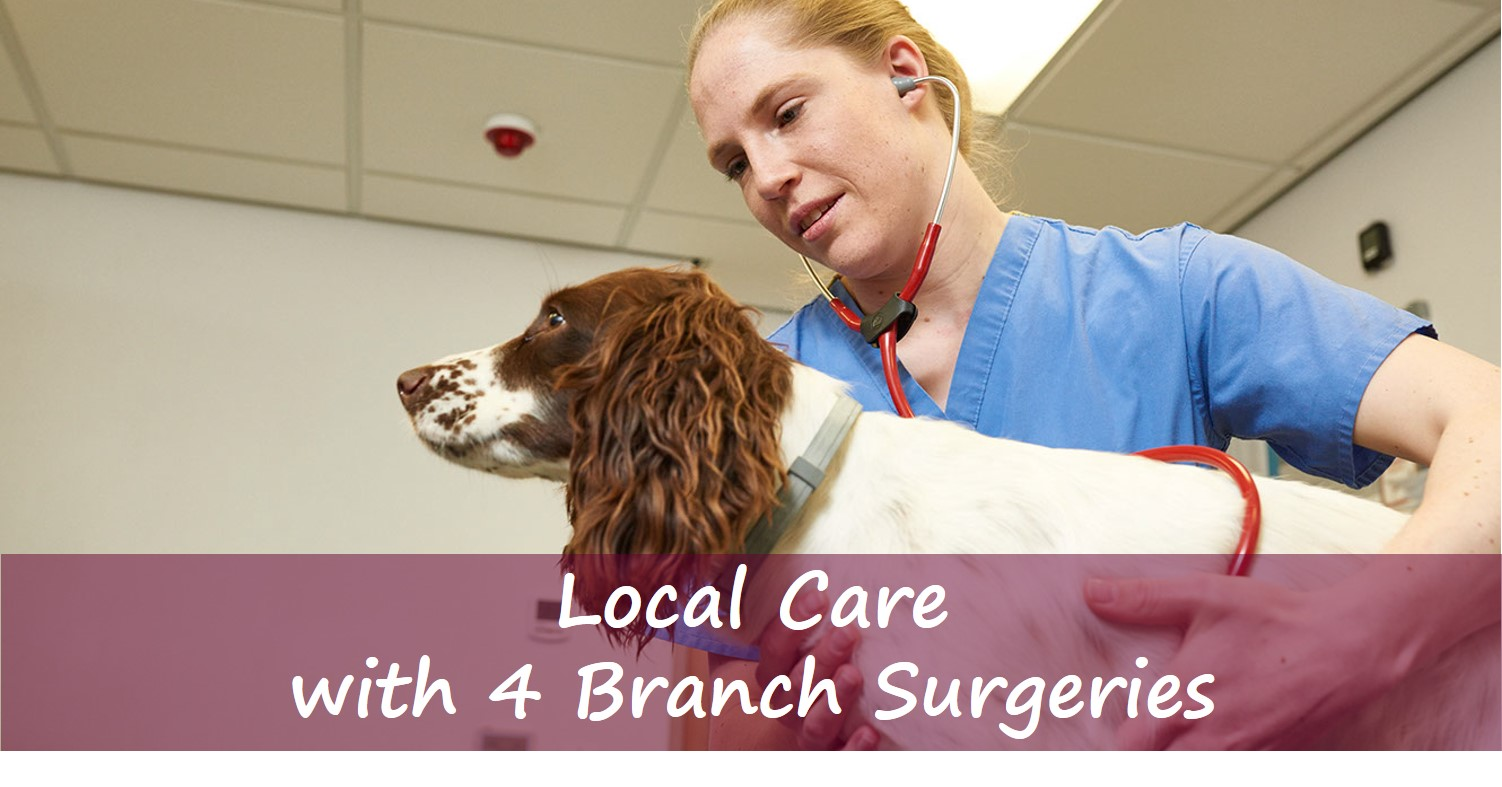 4 Local Branch Surgeries