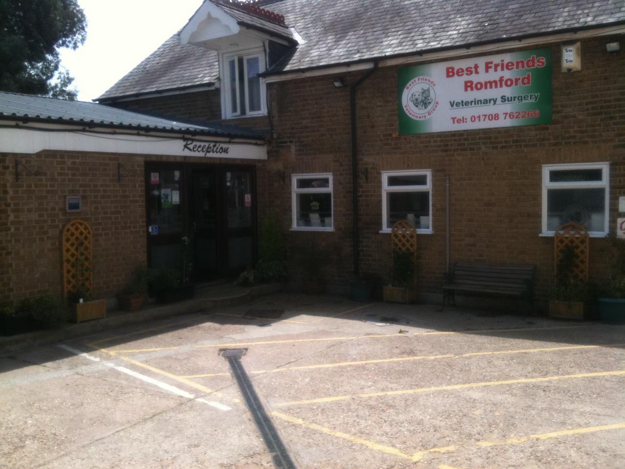 Best Friends Vets Romford Hoad Phillips Vet In Romford Essex