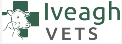 Iveagh Veterinary Surgery