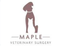 Maple Vet Surgery