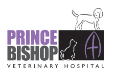 Prince Bishop Veterinary Hospital