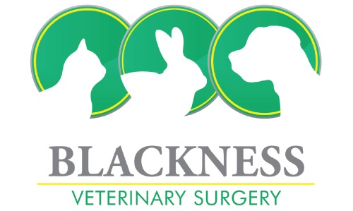 Blackness Veterinary Surgery