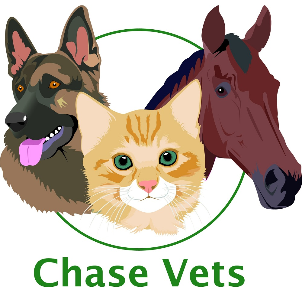Chase Vets - Tunbridge Wells (Eridge Road)