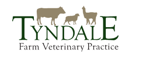 Tynedale Farm Veterinary Practice
