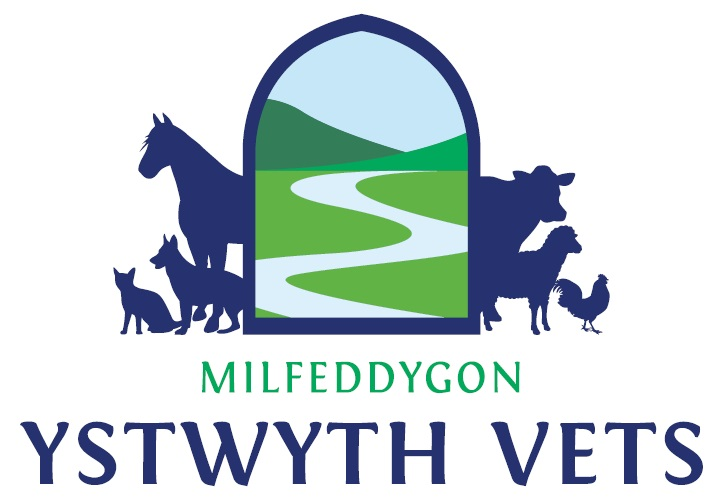 The Ystwyth Veterinary Practice Ltd