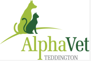 Alpha Veterinary Surgery