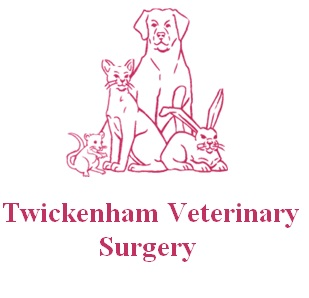 Twickenham Veterinary Surgery