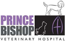 Dog Training Follingsby Lane