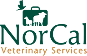 Norcal Veterinary Services