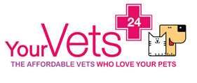 YourVets Coventry (24hr)