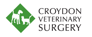 Croydon Veterinary Surgery