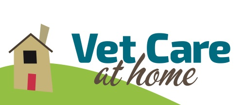 Vet Care at Home