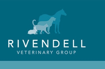 Greyfriars Equine Unit - Rivendell Veterinary Group