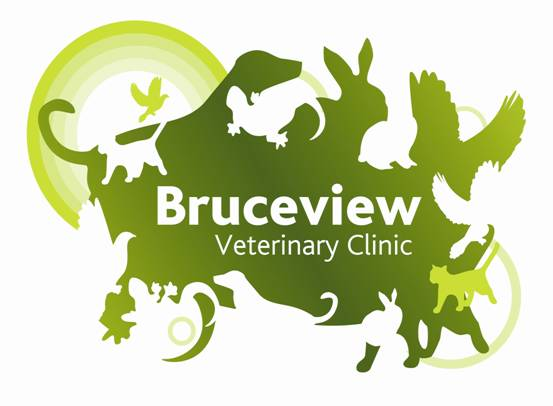 Bruceview Veterinary Clinic