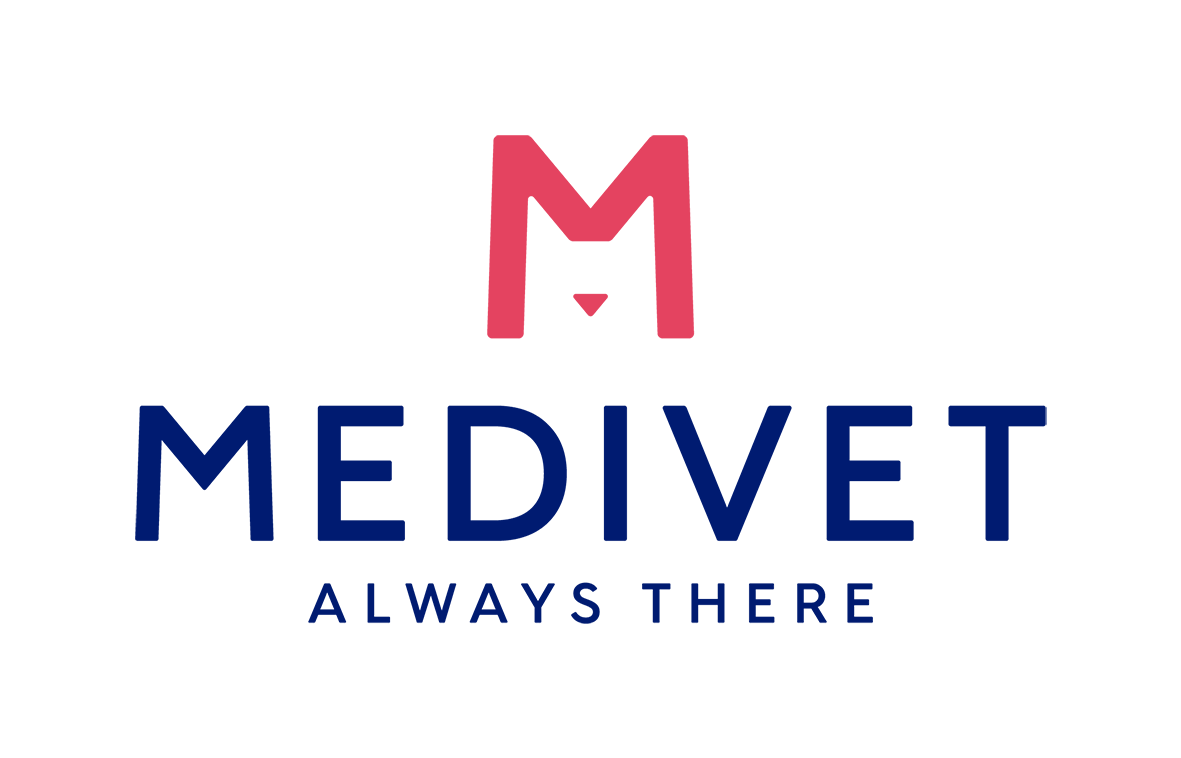 Medivet 24 Hour Camberwell - The London Animal Hospital