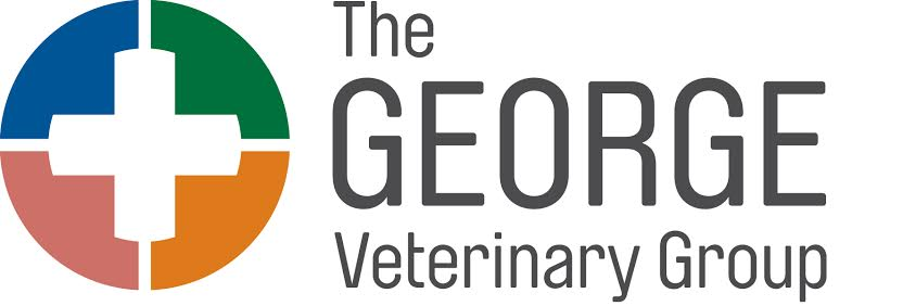 The George Veterinary Clinic - Nailsworth