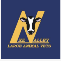 Axe Valley Large Animal Vets - Equine